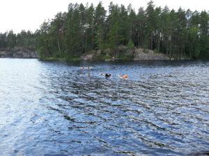 Uinti Vihti Race