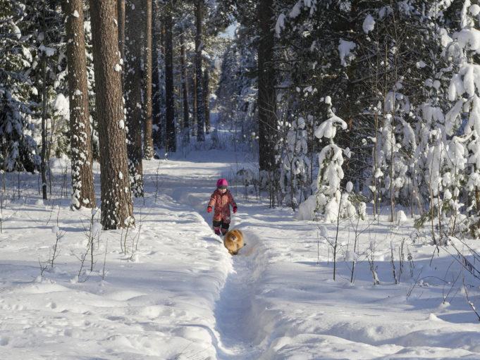 Lapsi ja koira metsäpolulla, kuva: Joenrinne Films
